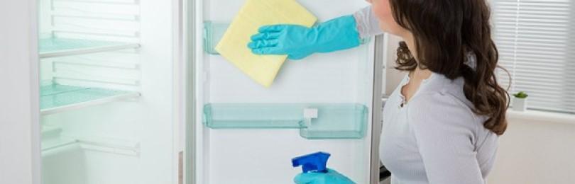 Подробные инструкции, как помыть холодильник No Frost (Ноу Фрост) своими руками