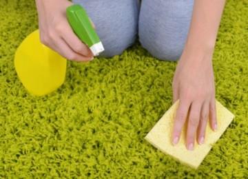 14 надежных способов, как почистить палас в домашних условиях быстро и эффективно