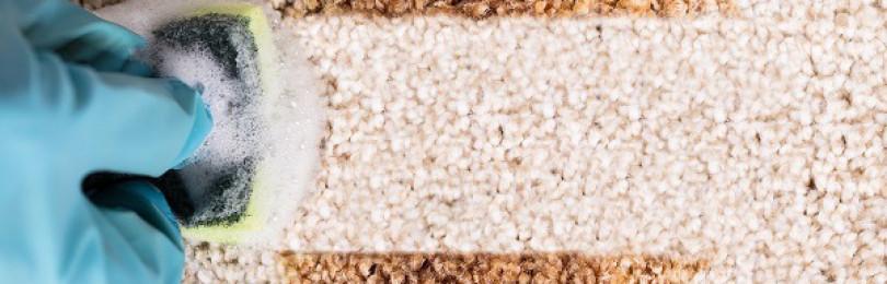 Простые пошаговые инструкции, как очистить ковер от пятен в домашних условиях