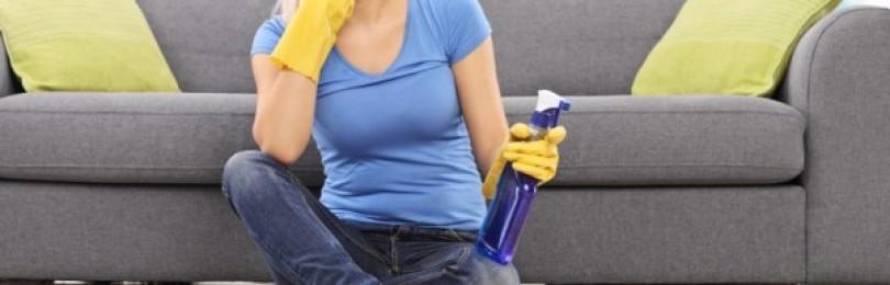 17 надежных и простых способов, как избавиться от запаха мочи на диване