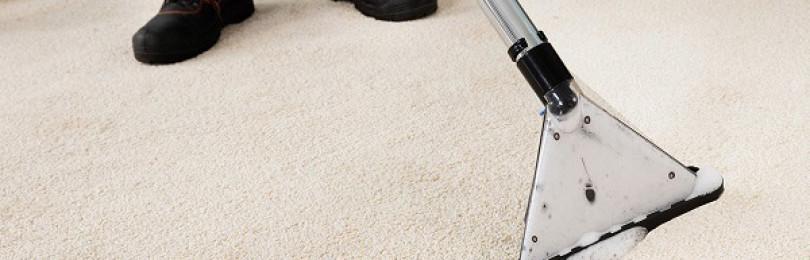 Рейтинг лучших средств для чистки ковров в домашних условиях