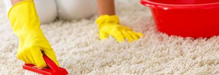 16 способов почистить белый ковер в домашних условиях своими руками